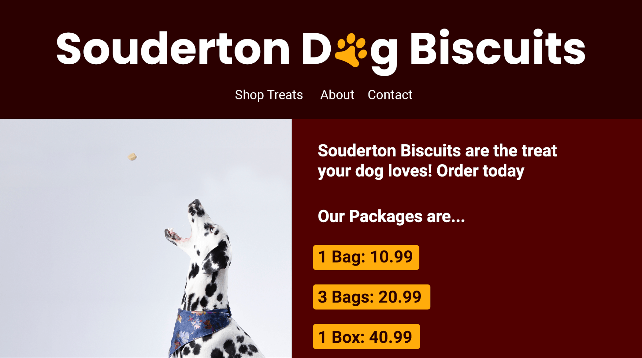 Souderton Dog Biscuits