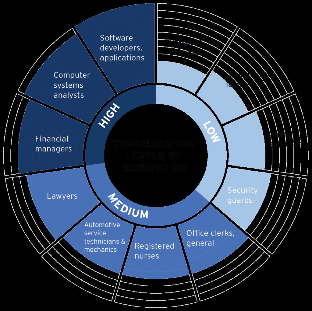 digitability-digital-literacy-program-digitization-chart